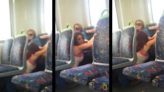 Lesbians On A Train