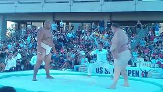 Sumo Wrestler Picks Up 417lb Opponent